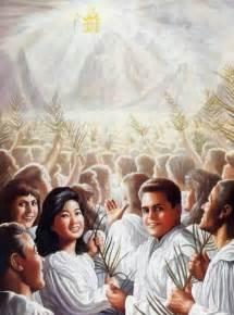 trib saints