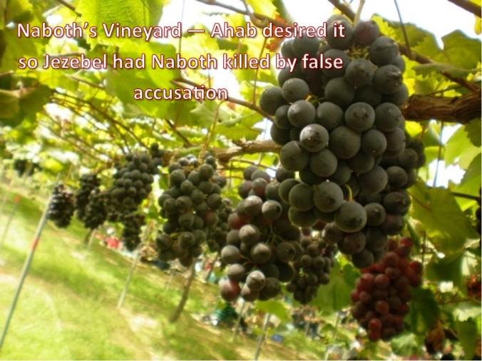 naboth vineyard