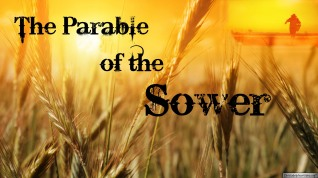 parable-of-the-sower 2
