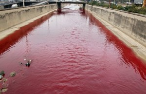 Beirut River turns red