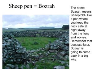 sheep-pen-bozrah-l