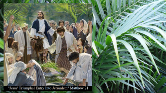jesus-triumphal-entry-into-jerusalem-matthew-21
