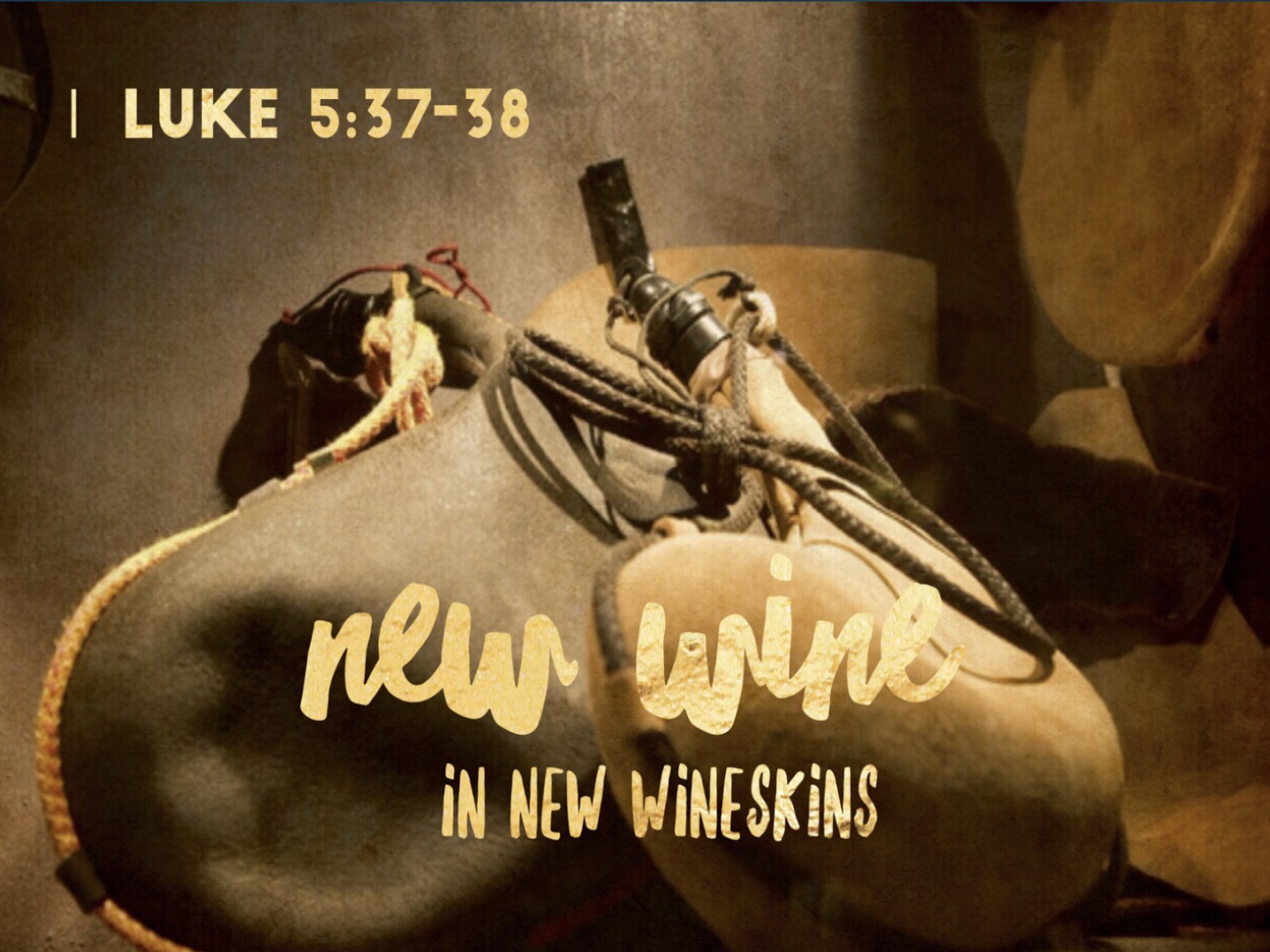 new wineskins