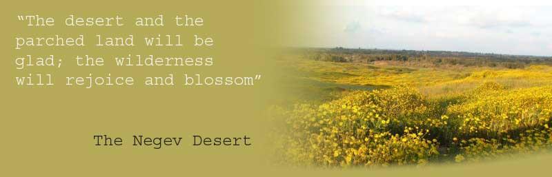 desert_blooms